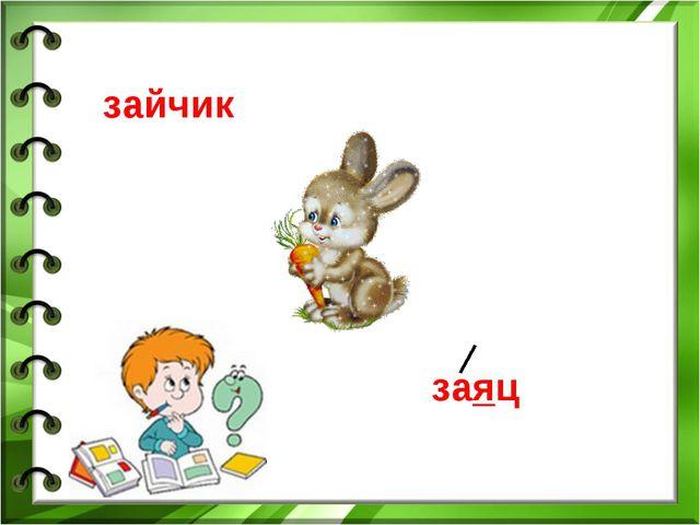 зайчик заяц