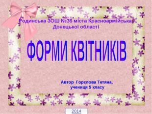Родинська ЗОШ №36 міста Красноармійська Донецької області 2014 Автор Горєлова