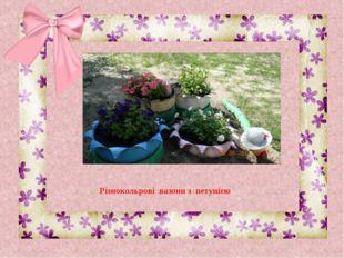 Різнокольрові вазони з петунією