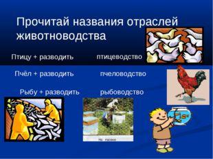 Прочитай названия отраслей животноводства Птицу + разводить Пчёл + разводить