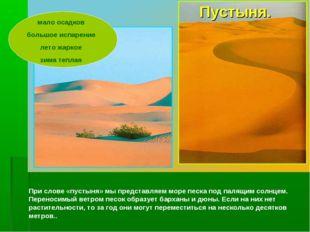 При слове «пустыня» мы представляем море песка под палящим солнцем. Переноси