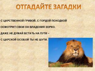 С ЦАРСТВЕННОЙ ГРИВОЙ, С ГОРДОЙ ПОХОДКОЙ ОСМОТРИТ СВОИ ОН ВЛАДЕНИЯ ЗОРКО. ДАЖЕ