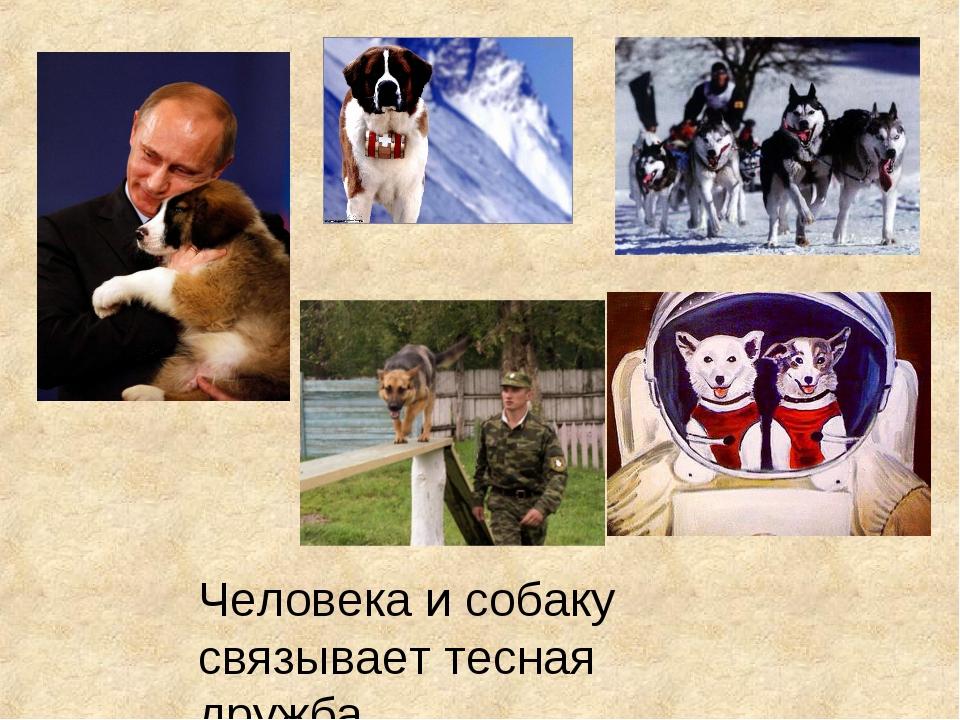 Человека и собаку связывает тесная дружба