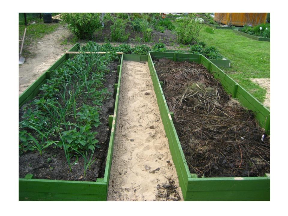 Планировка огорода: создание плана посадок. Как…