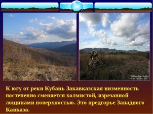К югу от реки Кубань Закавказская низменность постепенно сменяется холмистой