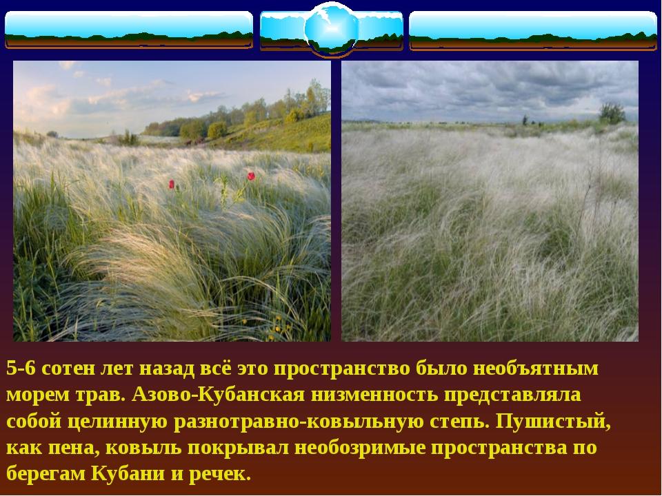 5-6 сотен лет назад всё это пространство было необъятным морем трав. Азово-К...