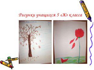 Рисунки учащихся 5 «Ж» класса