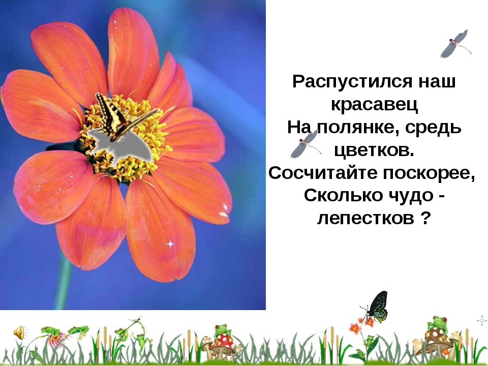Распустился наш красавец На полянке, средь цветков. Сосчитайте поскорее, Скол...