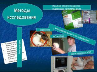 Методы исследования Исследовательский опыт над крысами Изучение этикеток прод