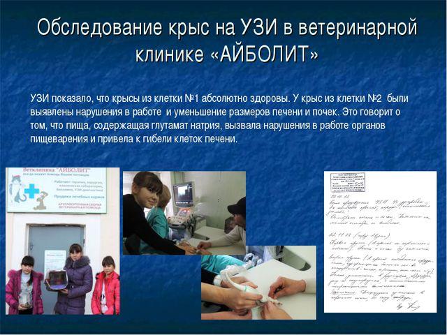 Обследование крыс на УЗИ в ветеринарной клинике «АЙБОЛИТ» УЗИ показало, что к...