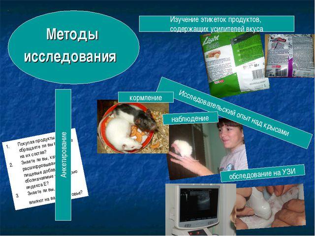 Методы исследования Исследовательский опыт над крысами Изучение этикеток прод...