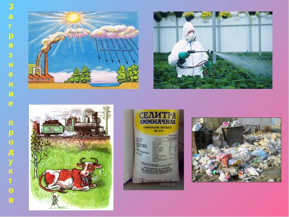 Цепь загрязнения Загрязняющие вещества попадают в воздух, воду, почву Растени...
