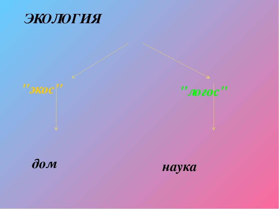 """ЭКОЛОГИЯ """"экос"""" """"логос"""" дом наука"""