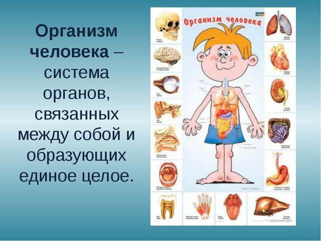 Организм человека – система органов, связанных между собой и образующих едино...