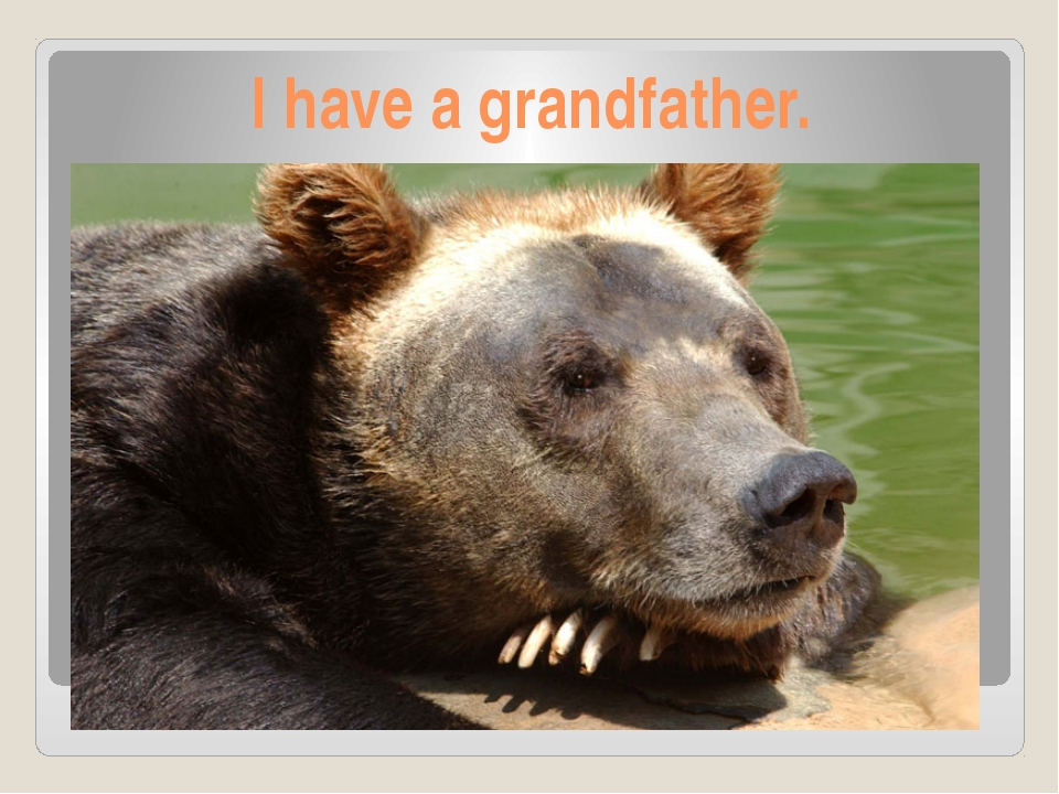 I have a grandfather.