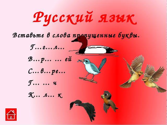 Белая птица с чёрными концами на крыльях. Любит рыбу. Рисование