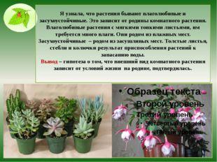 Я узнала, что растения бывают влаголюбивые и засухоустойчивые. Это зависит от