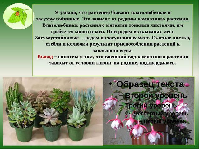 Я узнала, что растения бывают влаголюбивые и засухоустойчивые. Это зависит от...