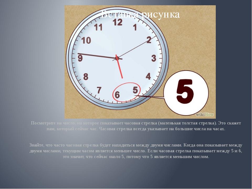 Посмотрите на число, на которое показывает часовая стрелка (маленькая толста...