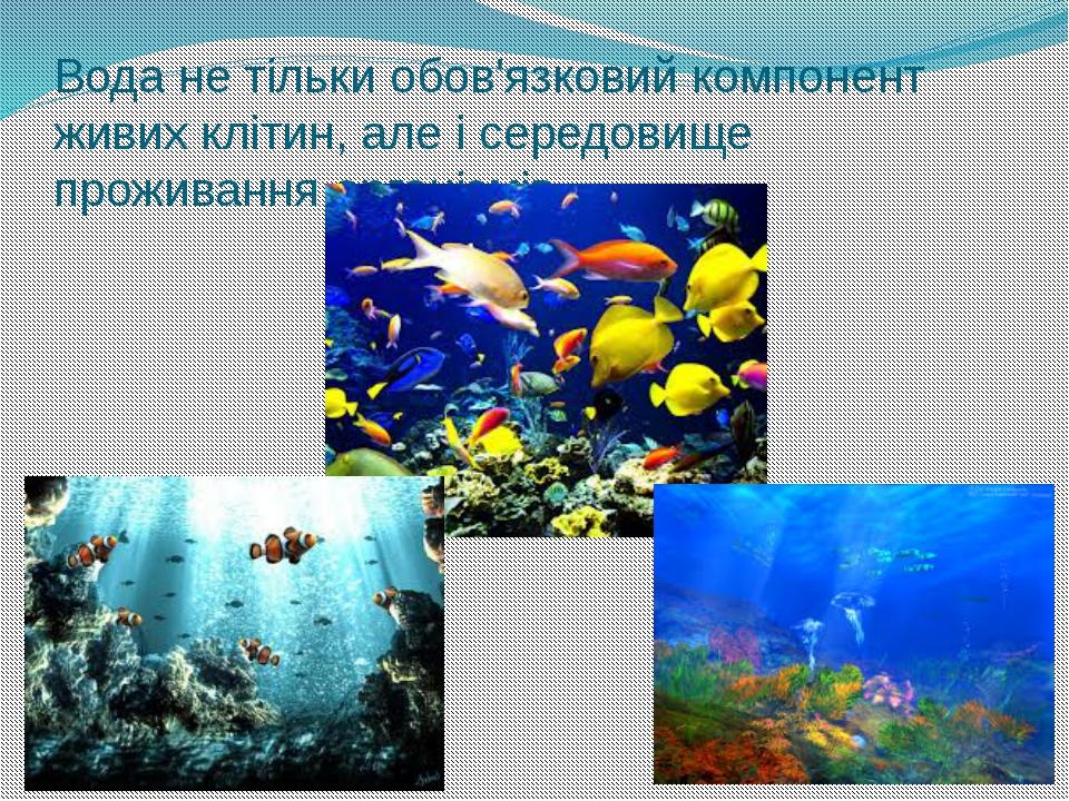 Вода не тільки обов'язковий компонент живих клітин, але і середовище проживан...