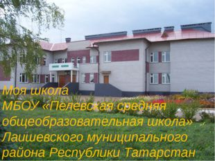 Моя школа МБОУ «Пелевская средняя общеобразовательная школа» Лаишевского муни