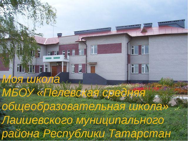 Моя школа МБОУ «Пелевская средняя общеобразовательная школа» Лаишевского муни...