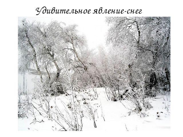 Удивительное явление-снег