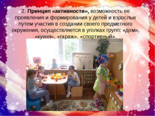 2. Принцип «активности», возможность ее проявления и формирования у детей и в
