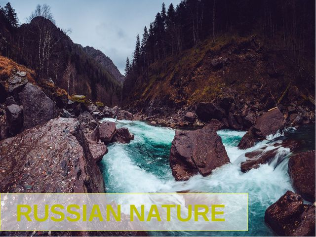 RUSSIAN NATURE