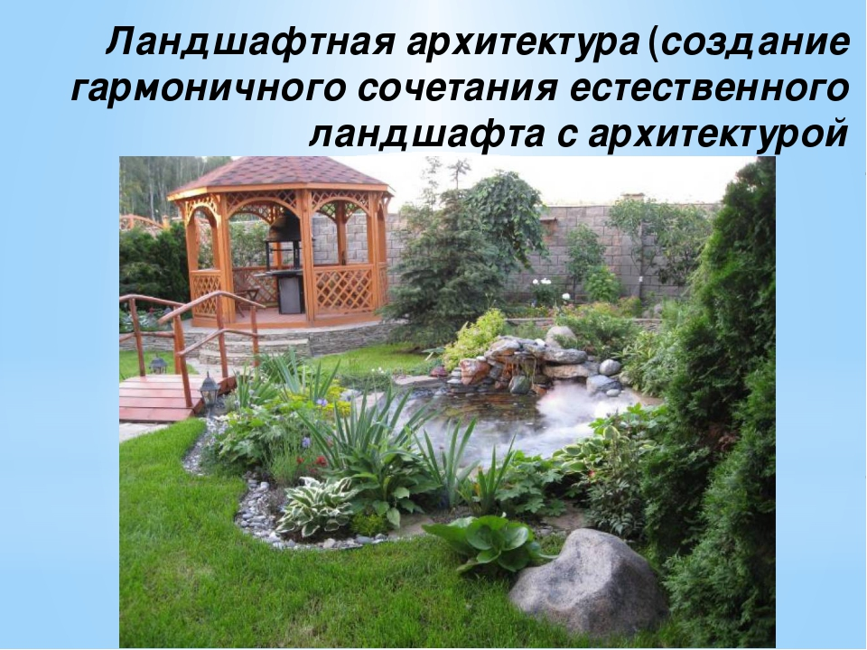 Ландшафтная архитектура (создание гармоничного сочетания естественного ландша...