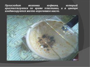 Происходит возгонка кофеина, который кристаллизуется по краям пластинки, а в