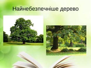 Найнебезпечніше дерево