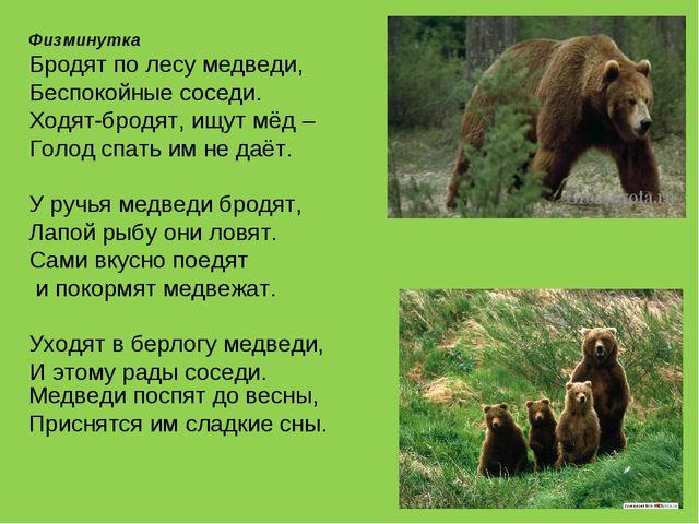 Физминутка Бродят по лесу медведи, Беспокойные соседи. Ходят-бродят, ищут мё...