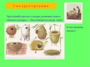 Прослушайте рассказ о гнездах различных птиц и ответьте на вопрос: « Чем отл