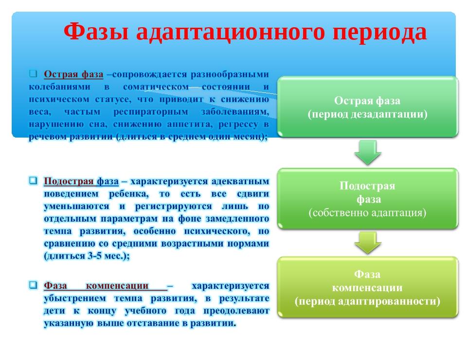 Фазы адаптационного периода