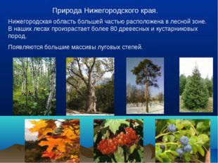 Природа Нижегородского края. Нижегородская область большей частью расположен
