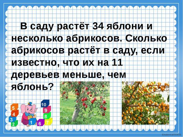 В саду растёт 34 яблони и несколько абрикосов. Сколько абрикосов растёт в са...