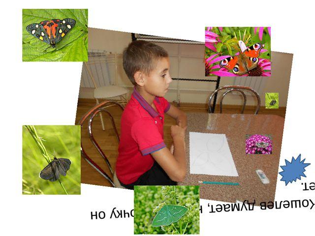 Саша Кошелев Саша Кошелев думает, какую бабочку он выберет.
