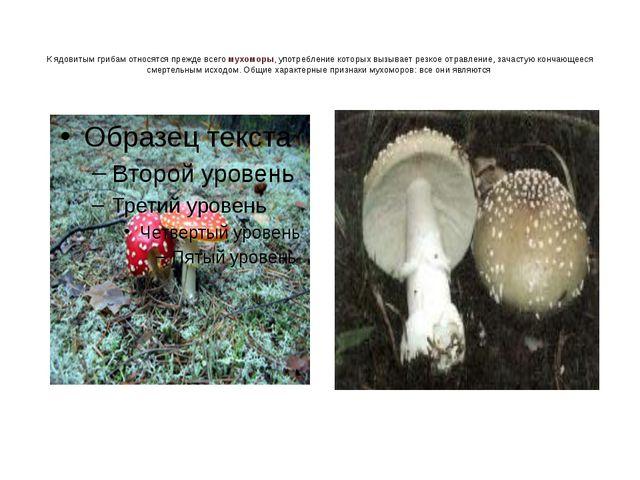 К ядовитым грибам относятся прежде всего мухоморы, употребление которых вызыв...