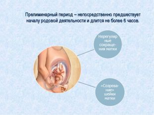 Прелиминарный период – непосредственно предшествует началу родовой деятельно
