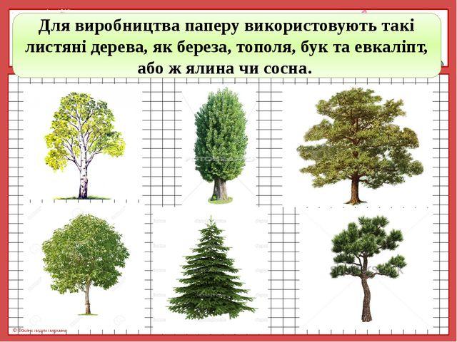 Для виробництва паперу використовують такі листяні дерева, як береза, тополя,...