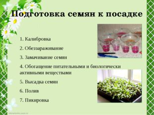 Подготовка семян к посадке 1. Калибровка 2. Обеззараживание 3. Замачивание се