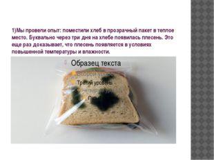 1)Мы провели опыт: поместили хлеб в прозрачный пакет в теплое место. Буквальн