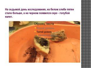 На седьмой день исследования, на белом хлебе пятен стало больше, а на черном