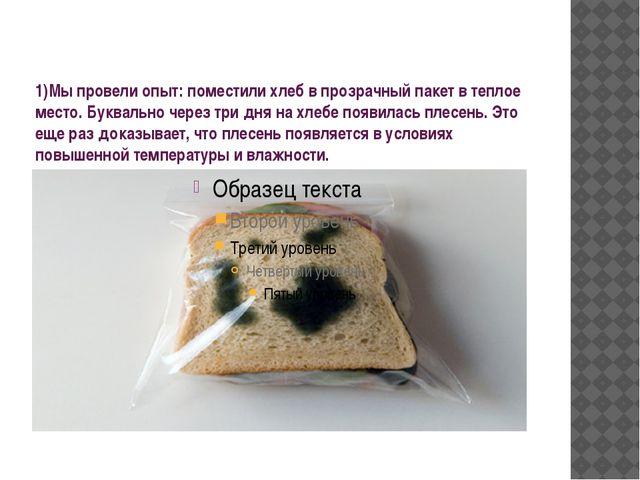 1)Мы провели опыт: поместили хлеб в прозрачный пакет в теплое место. Буквальн...
