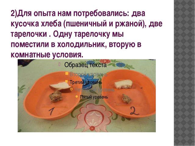 2)Для опыта нам потребовались: два кусочка хлеба (пшеничный и ржаной), две та...