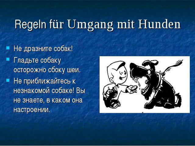 Regeln für Umgang mit Hunden Не дразните собак! Гладьте собаку осторожно сбок...