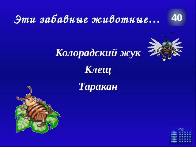 Эти забавные животные… Колорадский жук Клещ Таракан 40 Категория Ваш ответ