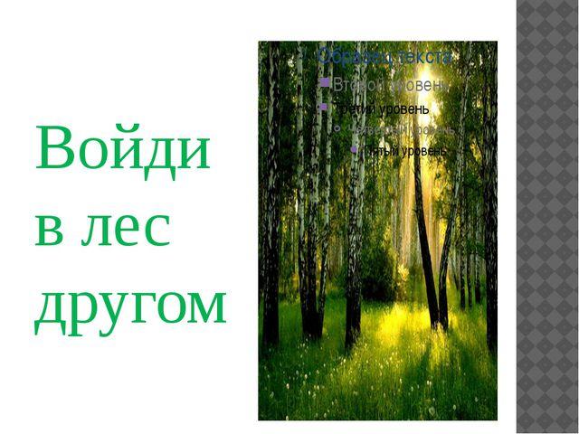 Войди в лес другом