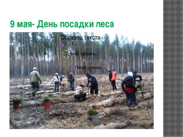 9 мая- День посадки леса